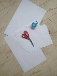 paper n sciss